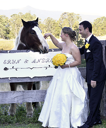 Marry Me Marilyn conducted Eryn & Andrew's Country Fairytale Wedding Tyalgum Ridge Retreat Tyalgum Northern NSW